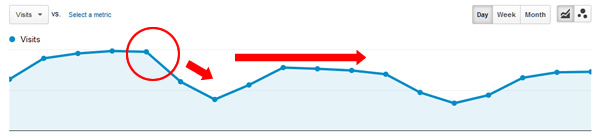 large-website-panda-hit