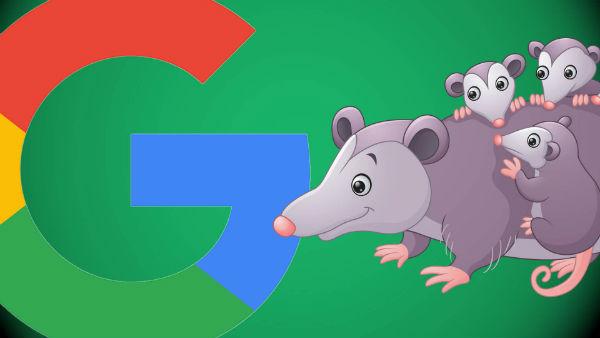"""Tất cả mọi điều về bản cập nhật thuật toán """"Possum"""" của Google"""